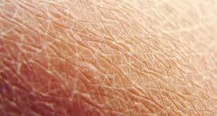 Eucerin Omega (Droge huid)